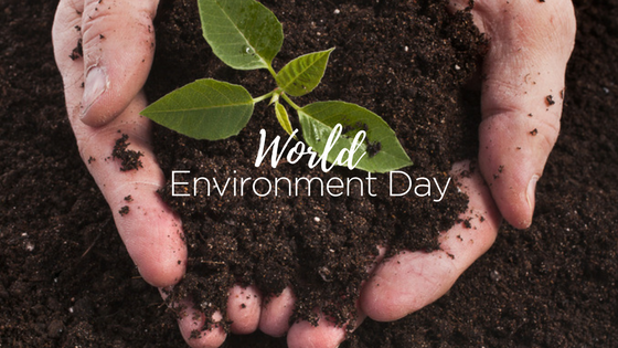World Environment Day Compost Program Event Waste Management Green Event Services Calgary